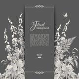 Vector Floral Romantic Card Stock Photos