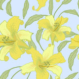 Vector floral seamless background. Vector floral seamless background with yellow lilies Royalty Free Stock Photography