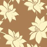 Vector floral seamless  pattern. Stock Photos