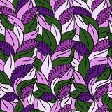 Vector Floral Seamless Pattern Background Royalty Free Stock Photos