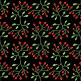 Vector floral seamless pattern with berries, branches and leaves. Bright berries and leaves on the dark background. Botanical gard Stock Image
