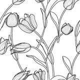 Vector floral seamless pattern. Black and white background with outline hand drawn tulip flowers.   Stock Image