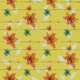 Vector floral seamless pattern with blooming flowers Stock Image