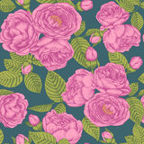 Vector floral seamless pattern with bouquets of hand drawn pink roses. Royalty Free Stock Photo