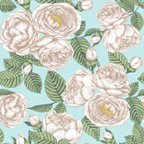 Vector floral seamless pattern with bouquets of hand drawn white roses Stock Fotografie