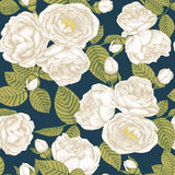 Vector floral seamless pattern with bouquets of hand drawn white roses. Stock Photos