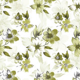 Vector - Floral seamless pattern Stock Image