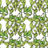 Vector floral seamless pattern with green leaves Royalty Free Stock Photos