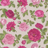 Vector floral seamless pattern with hand drawn red and pink roses on beige background. In vintage style Royalty Free Stock Images