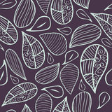 Vector Floral seamless pattern. Stock Image