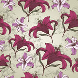 Vector floral seamless pattern with Lilies in vintage style Royalty Free Stock Images