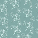 Vector floral seamless pattern with Lilies in vintage style. Royalty Free Stock Photography