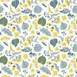 Vector floral seamless pattern with linden flowers. Hand drawn eco design. stock illustration
