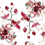Vector floral seamless pattern with orchid flowers painted in wa Royalty Free Stock Images