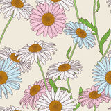 Vector floral seamless pattern. Pastel colors background with hand drawn chamomile flowers. Stock Image