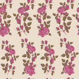 Vector floral seamless pattern with pink roses on beige background Royalty Free Stock Photo