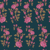 Vector floral seamless pattern with pink roses on dark green background Stock Images