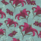 Vector floral seamless pattern with purple lilies. Royalty Free Stock Image