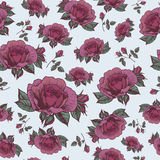 Vector floral seamless pattern with roses in vintage style Stock Photos