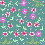 Vector floral seamless pattern and seamless patter Royalty Free Stock Image