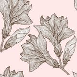 Vector floral seamless pattern in vintage style Stock Images