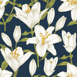 Vector floral seamless pattern with white lilies. Floral background in vintage style Royalty Free Stock Image