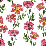 Vector floral seamless pattern. Withf brier flowers colored by watercolor with paint stains, hand drawn vector illustration Royalty Free Stock Image