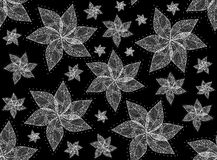 Vector floral seamless texture with flowers with lacy petals Stock Image