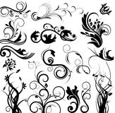 Vector floral set Royalty Free Stock Images