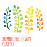 Vector floral set. Colorful floral collection with leaves, drawing watercolor. Spring or summer design for invitation, wedding or Royalty Free Stock Images