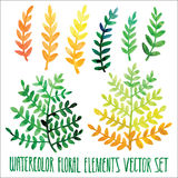 Vector floral set. Colorful floral collection with leaves, drawing watercolor. Spring or summer design for invitation, wedding or Stock Image