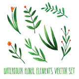 Vector floral set. Colorful floral collection with leaves, drawing watercolor. Spring or summer design for invitation, wedding or Royalty Free Stock Photos