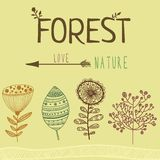 Vector floral set of different forest elements Royalty Free Stock Images