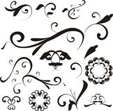 Vector floral shapes  Royalty Free Stock Photos