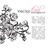 Vector Floral Sketch Hand Drawn Background Stock Photos