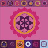 Floral spring color floral mandala Royalty Free Stock Photos