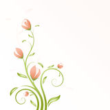 Vector Floral Swirl Royalty Free Stock Photo