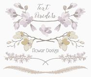 Vector Floral Text Dividers. Flower Design Elements. Colorful Hand Drawn Floral Text Dividers, Line Borders with Branches, Herbs, Plants and Flowers. Decorative Stock Photos