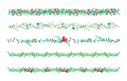 Vector Floral vines, border, liana with leaves and flowers. drawing wat Stock Photos