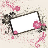 Vector Floral vintage frame Stock Photos