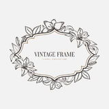 Vector floral vintage frame. Retro style graphic Royalty Free Stock Image