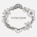 Vector floral vintage frame. Retro style graphic Royalty Free Stock Photo