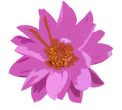 Vector flower. Image from my mouse Stock Photography