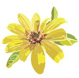 Vector flower. Vector illustration of yellow flower Royalty Free Stock Photo