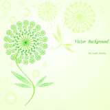 Vector flower background. Stock Images