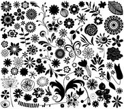 Vector flower elements. In black and white Royalty Free Stock Photography