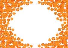 Vector flower frame pattern Stock Image