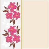 Vector flower frame Stock Image