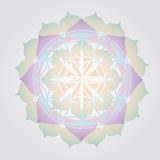 Flower of Life design Royalty Free Stock Photography
