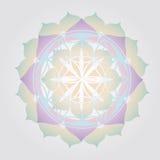 Flower of Life design royalty free illustration